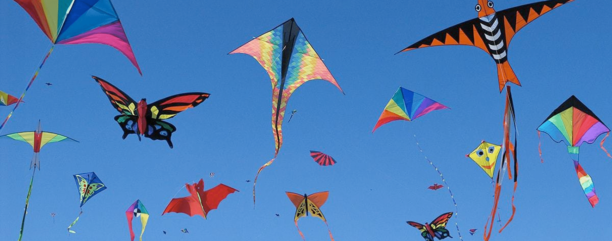 Spartanburg set to SOAR with International Kite Festival